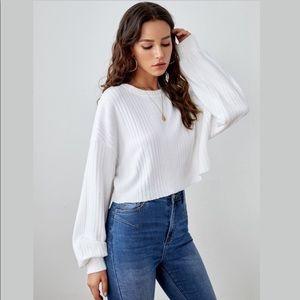 Shein | NWT Drop Shoulder Rib Knit White Crop Tee